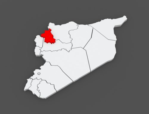 Syria in a Week (7 – 13 May 2019)
