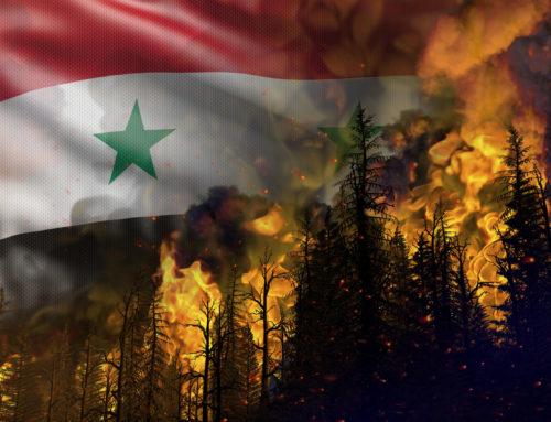 «نكبة الحرائق» تُحول بعض مصايف سوريا وحقولها إلى رماد